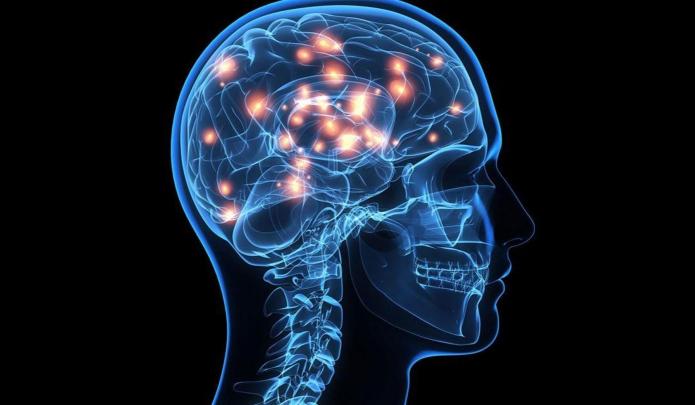 Neuroscience | University of Pittsburgh